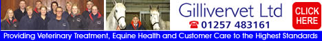 Gillivervet Ltd - for Professional Veterinary Treatment and Equine Health